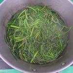 Cách luộc rau muống với rau rút xanh rờn, giòn tan
